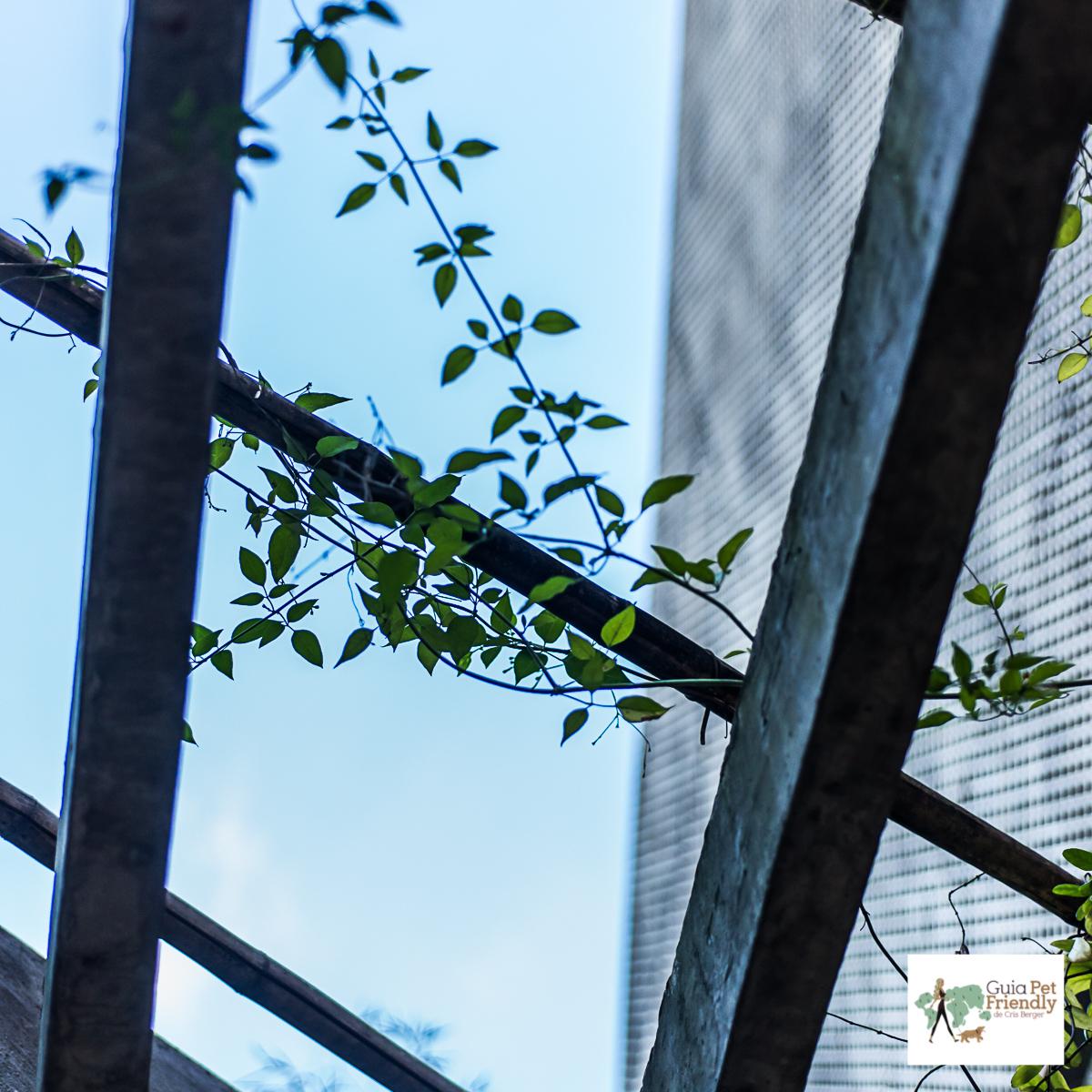 galho de planta, céu e prédio ao fundo