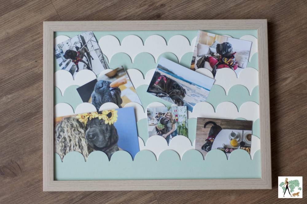 quadro com diversas fotos de mulher e cachorro