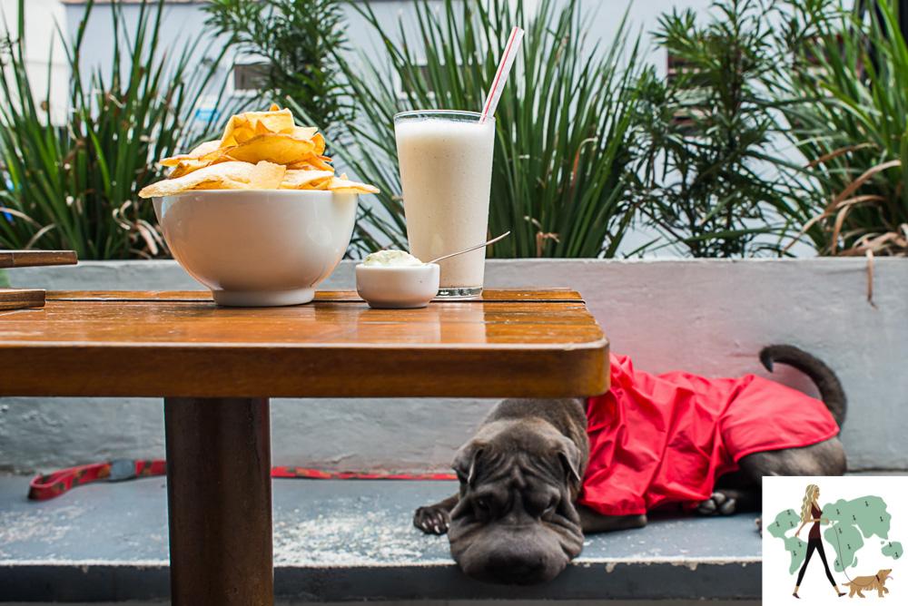 cachorro deitado ao lado da mesa com lanche de hamburgueria