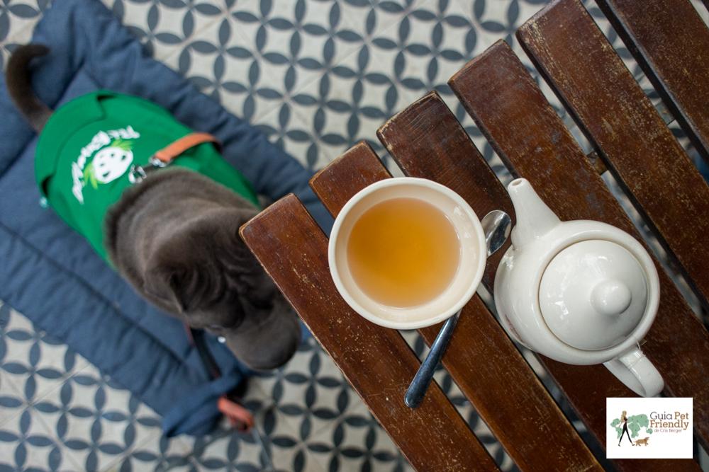 chá e cachorro deitado no chão