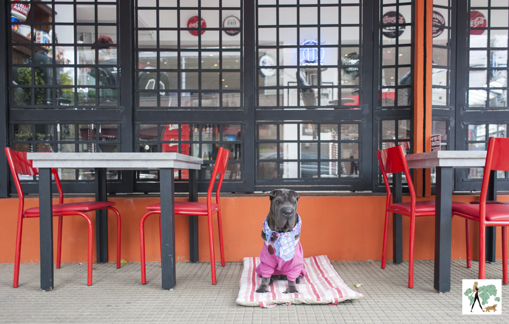 10 hamburguerias pet friendly em SP