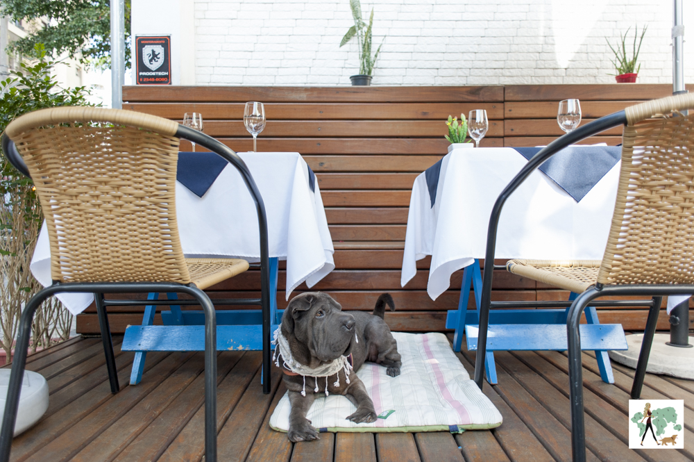 cachorro deitado entre duas mesas