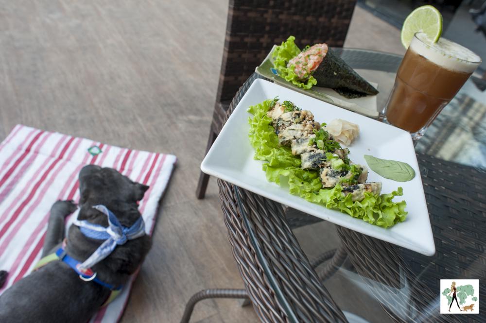 em cima da mesa um prato de hot roll e temaki e cachorro deitado no chão