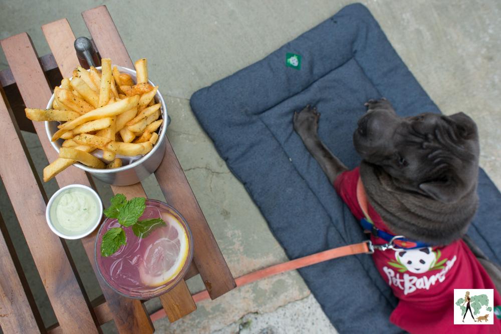 batatas fritas na mesa e cachorro sentado