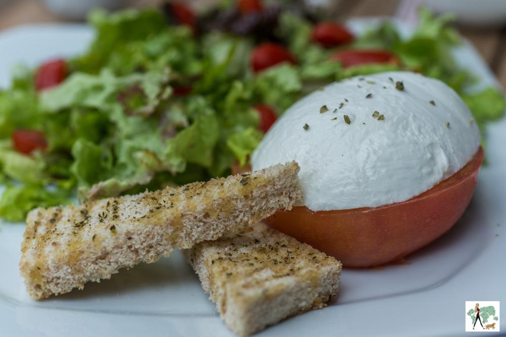 salada com tomate, alface, muçarela de búfala e pão torrado