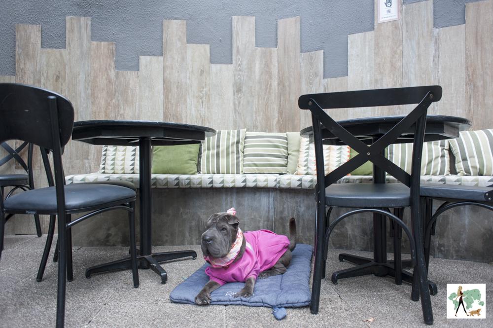 cachorro deitado entre mesas em varanda de restaurante