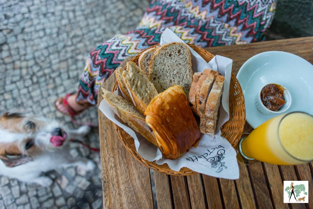 5 lugares pet friendly para tomar café da manhã no Rio