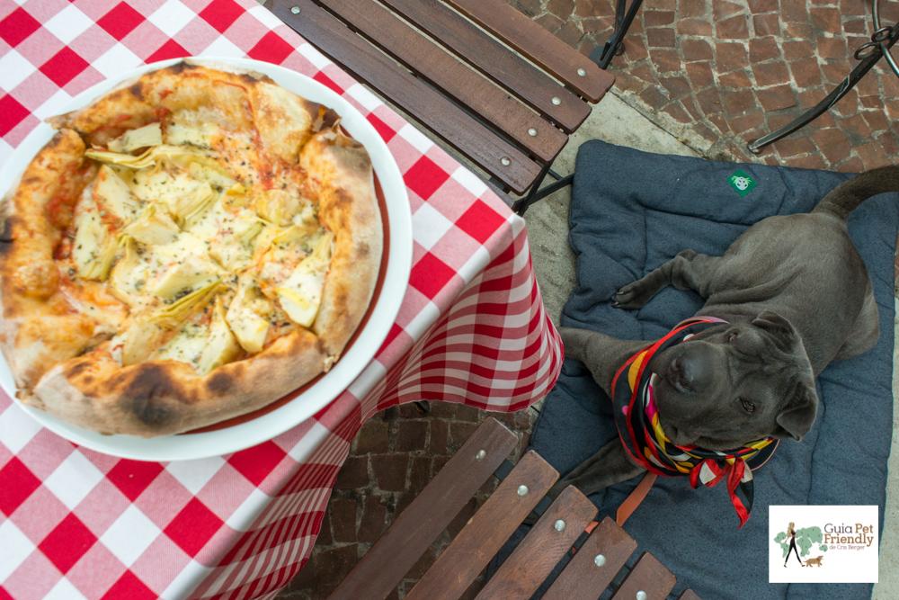 pizza e cachorro sentado ao lado da mesa