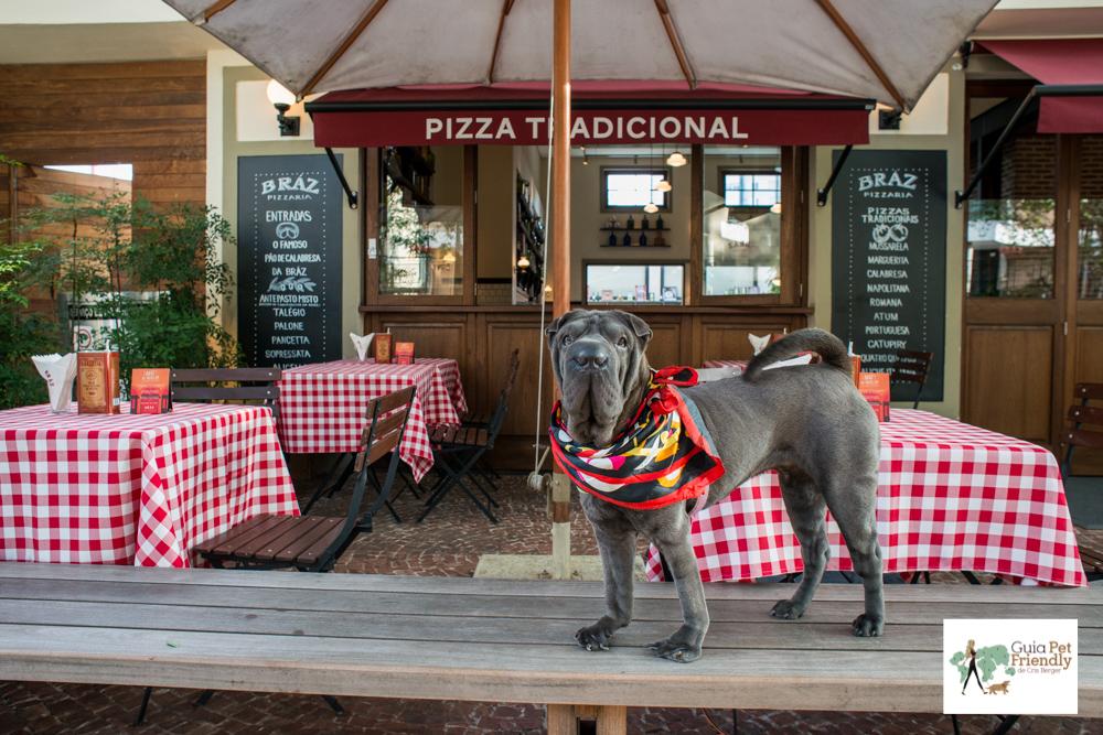 5 pizzarias pet friendly em São Paulo