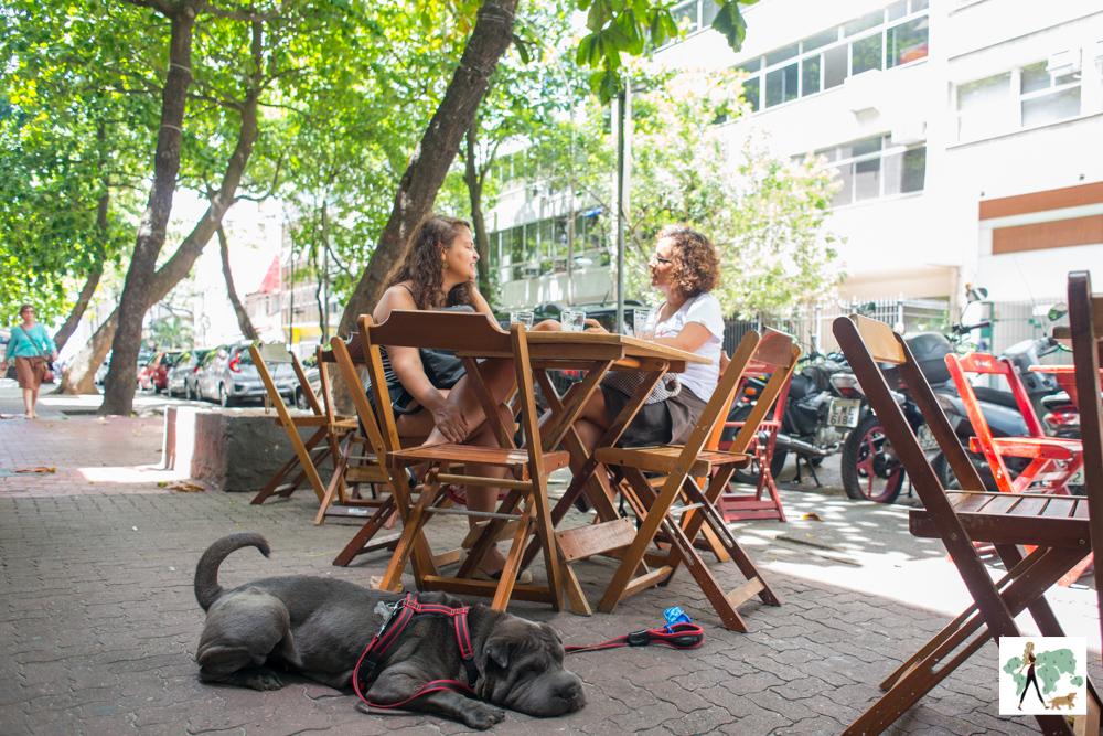 lugares para fazer happy hour com os pets no Rio