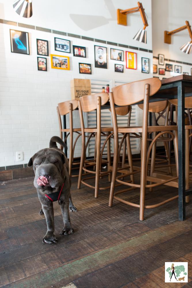 cachorro com a língua para fora ao lado da mesa