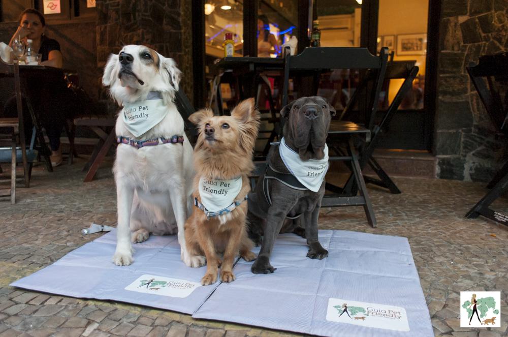 cachorros em cima de tapete na calçada de bar
