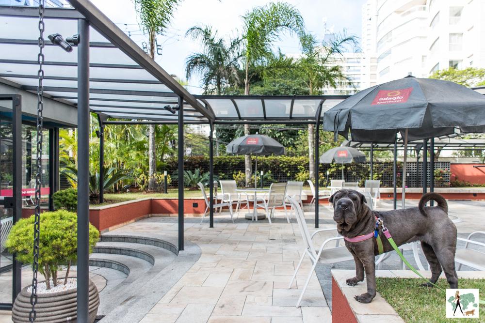 cachorro em jardim de hotel