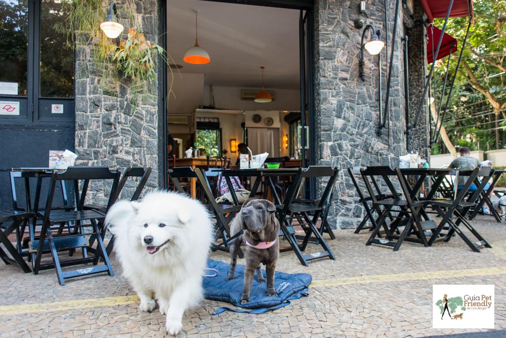 cachorros na calçada