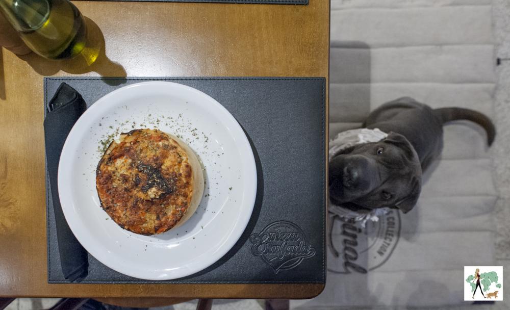 cachorro e o prato