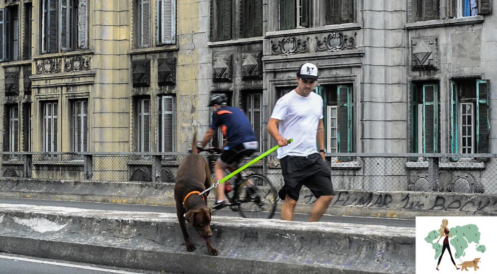 homem segurando cachorro pela guia