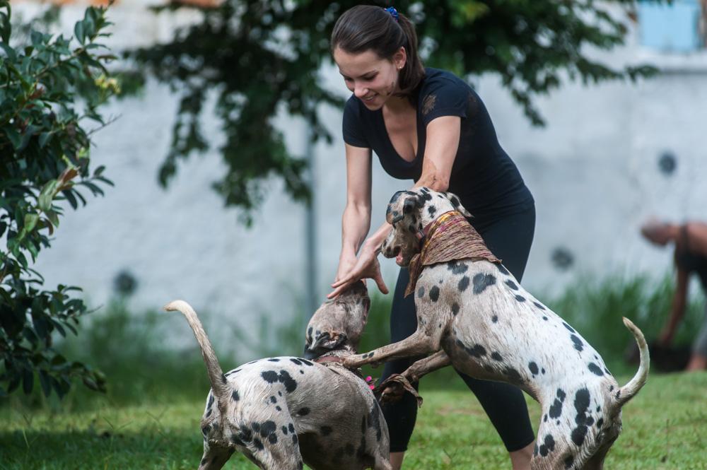 mulher brincando com cachorros no parque