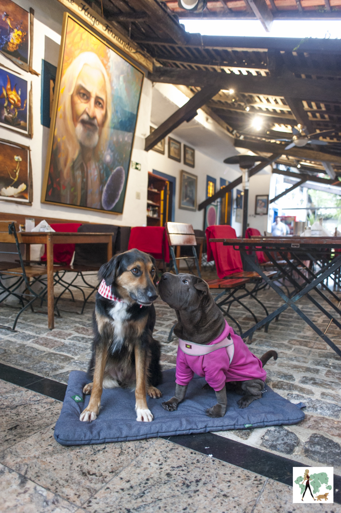 cachorros sentados na parte de dentro de restaurante com quadro atrás