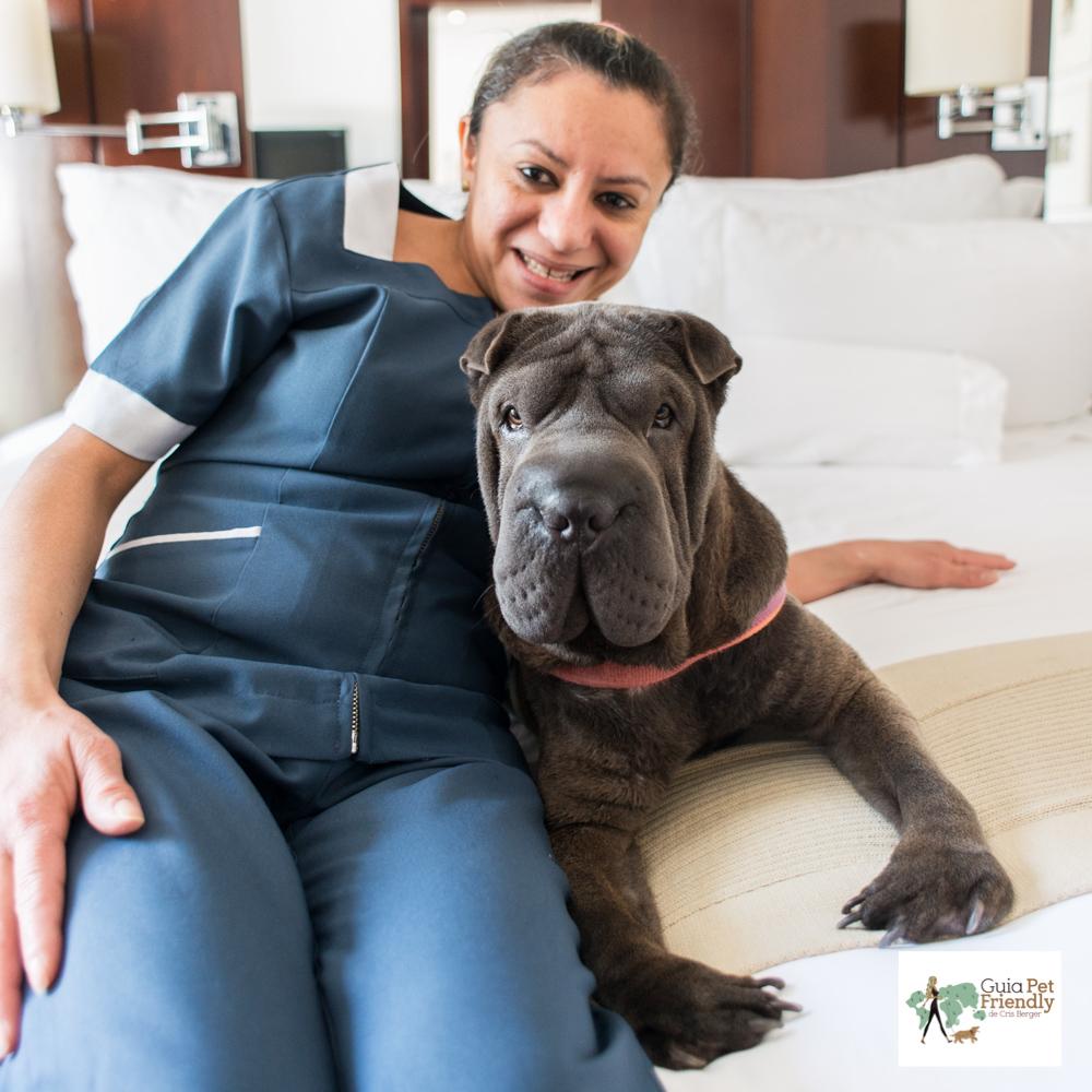 cachorro em cima da cama de hotel e camareira sentada ao lado