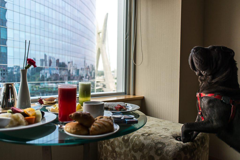 cachorro ao lado de mesa com pratos de comida