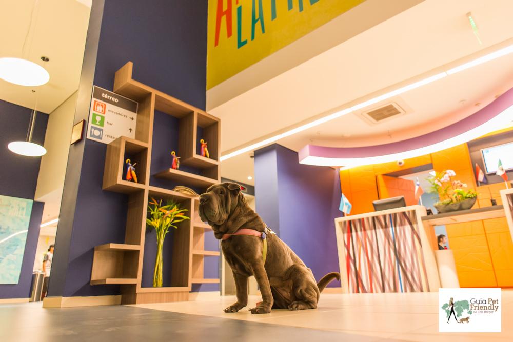 cachorro sentado em lobby de hotel