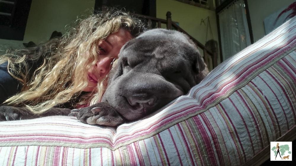 mulher deitada ao lado de cachorro