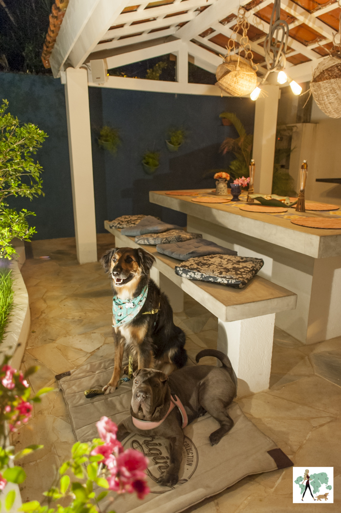 dois cachorros posando ao lado da mesa