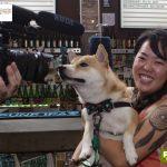 mulher segurando cachorro com gravata