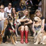 mulheres sentadas na escada ao lado de cachorros