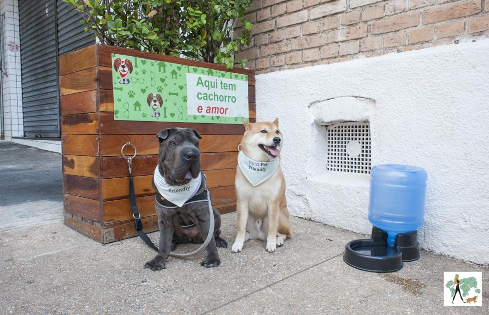 Cachorros sentados ao lado de bebedouro