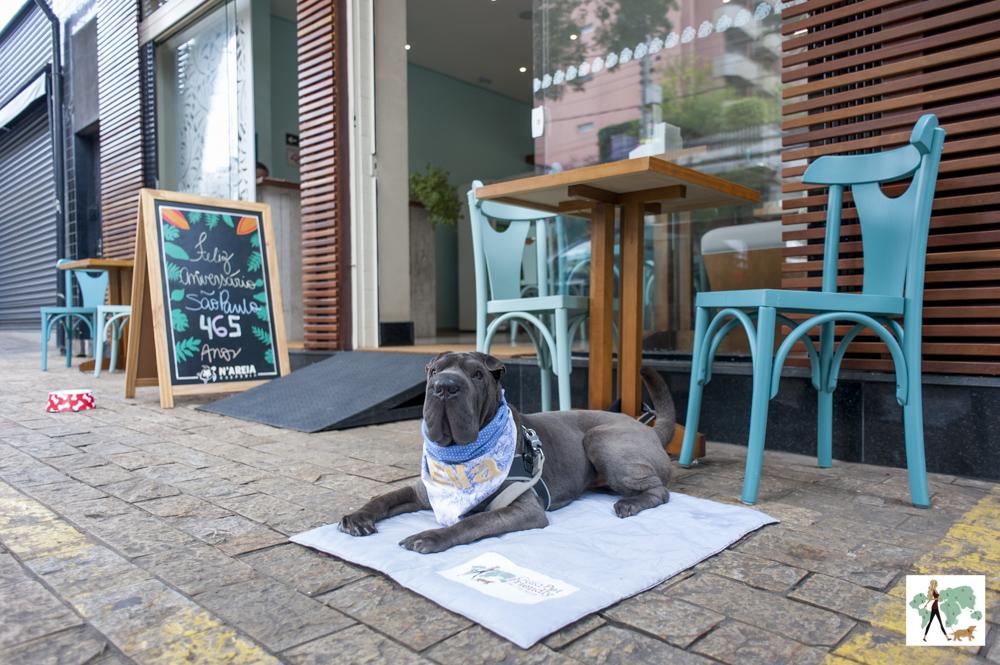 cachorro sentado na calçada ao lado de mesa da creperia N'Areia