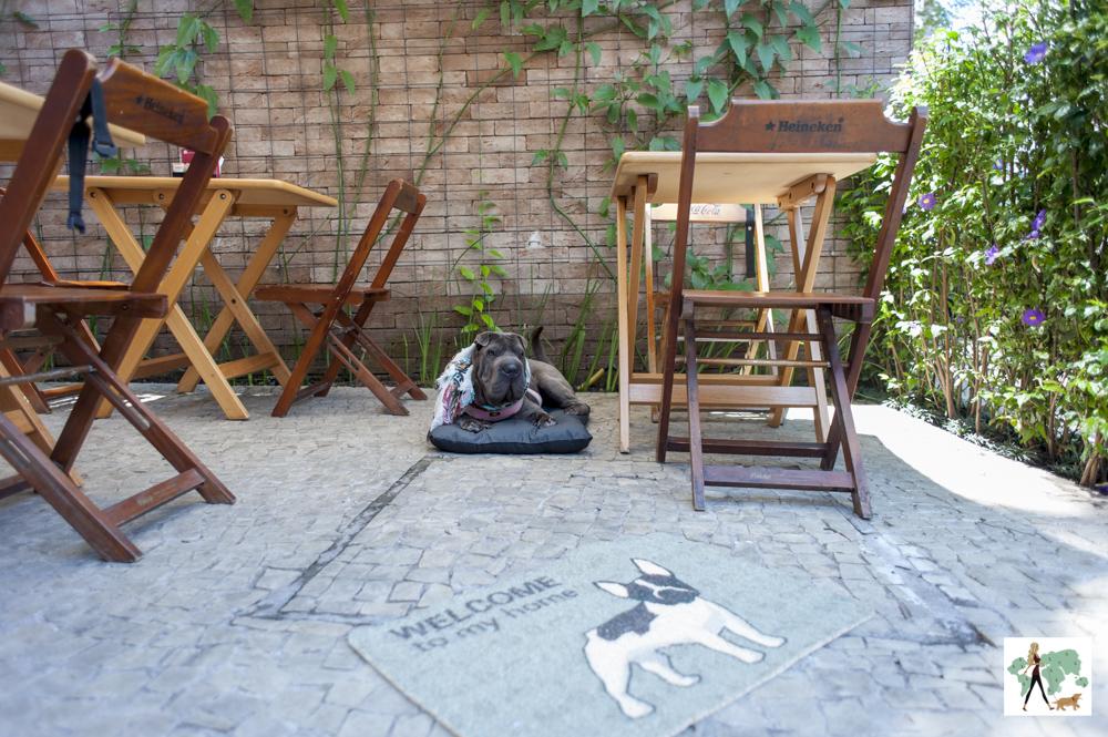 cachorro em deque pet friendly do restaurante Fritos e Assados