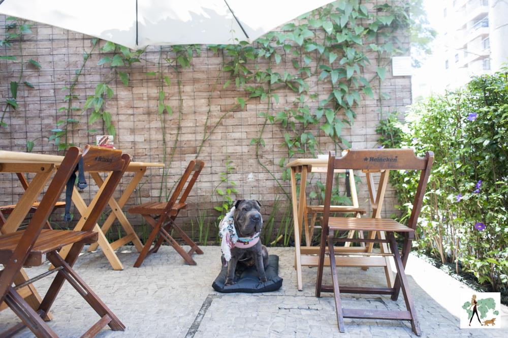 cachorro em deque pet friendly no restaurante Fritos e Assados