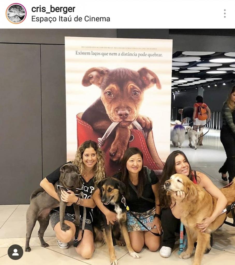 mulheres e cachorro em sala de cinema