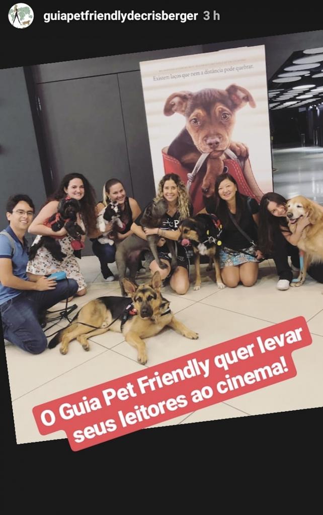 pessoas e cachorros em sala de cinema