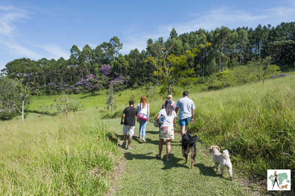 pessoas e cachorros caminhando na pousada Gaia Viva