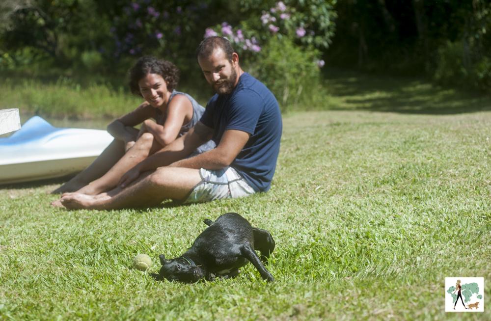 cachorro se esfregando na grama e homem e mulher sentados olhando