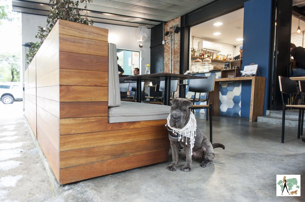 cachorro sentado na varanda do restaurante Epi Gastronomia