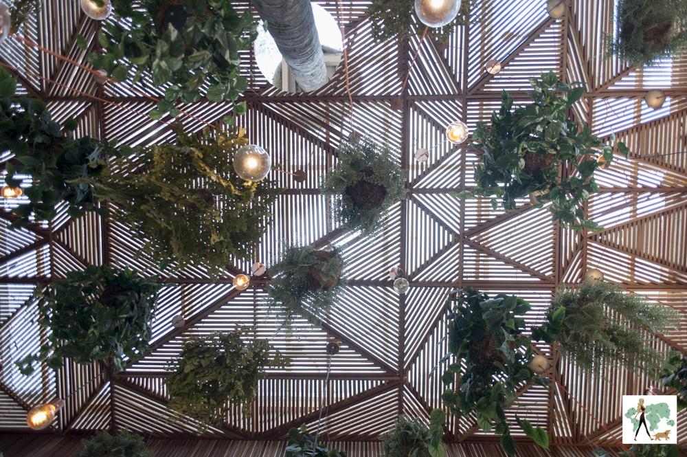 teto com plantas e lâmpadas penduradas à mostra