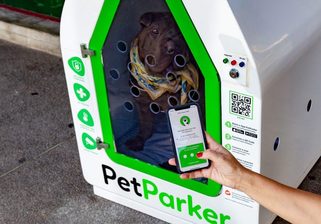 mão segurando celular e apontando para casinha com cachorro dentro