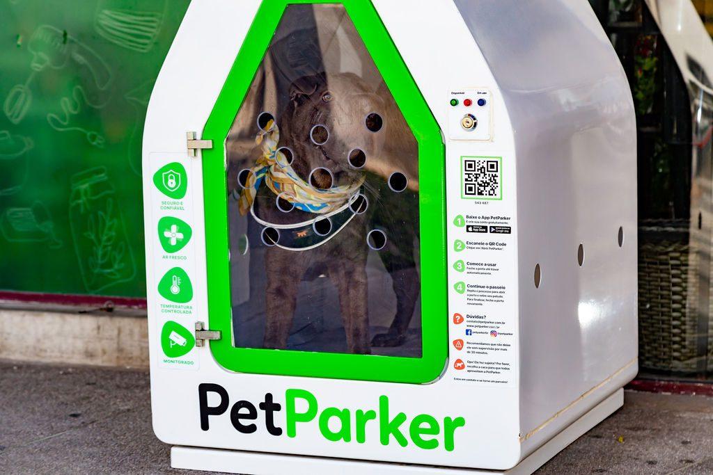 cachorro dentro da casinha da PetParker