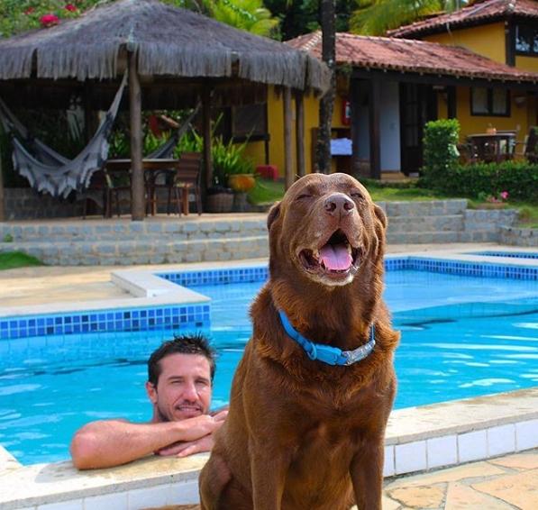 homem na piscina e cachorro marrom na frente