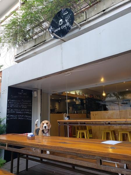 cachorro em café pet friendly de Porto Alegre