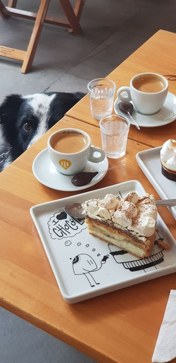 um pedaço de torta, café e o cachorro