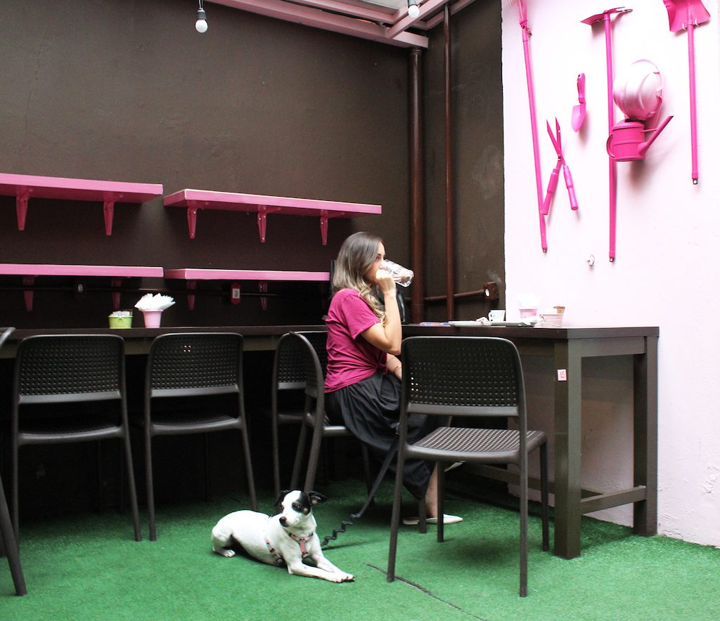 mulher sentada tomando café e cachorro ao lado