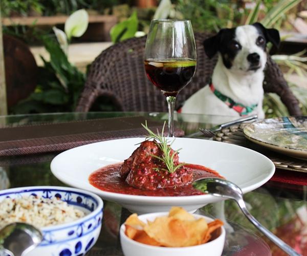 prato de comida e um cachorro ao fundo