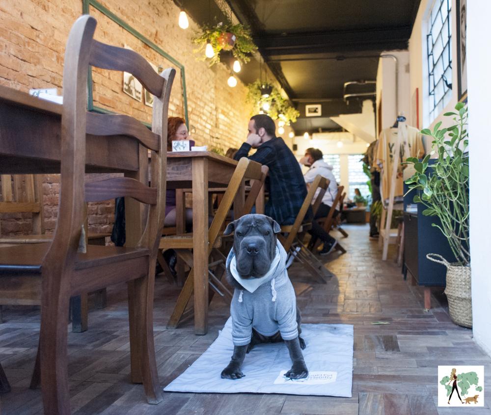 cachorro sentado ao lado de mesas de restaurante