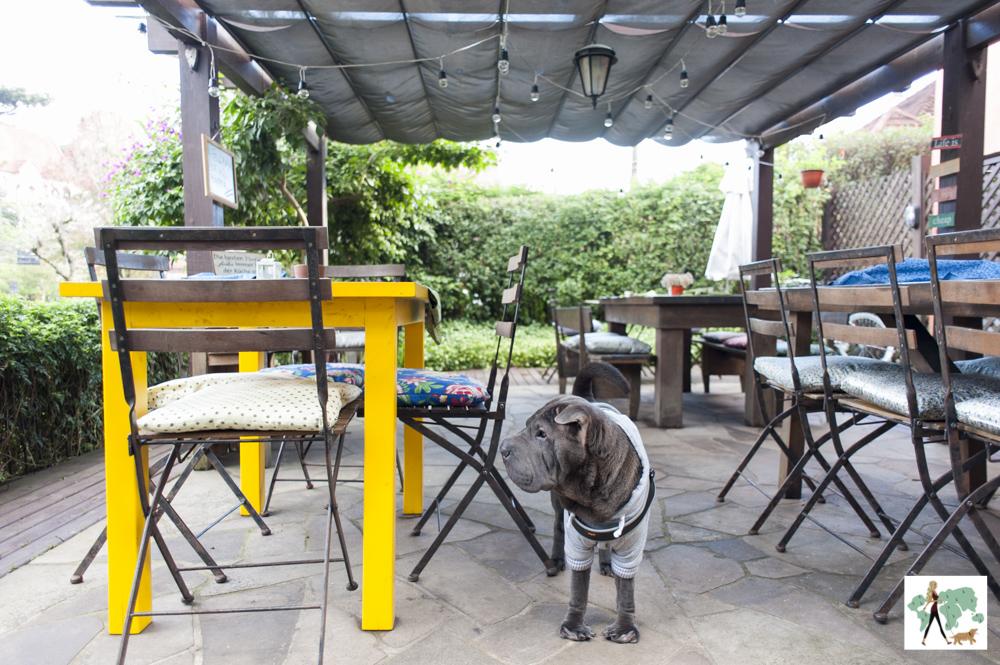 cachorro ao lado de mesas
