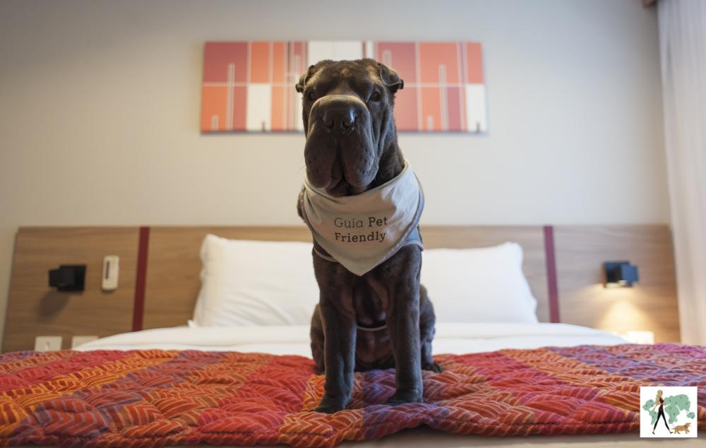 cachorro em cima da cama do Hotel Laghetto
