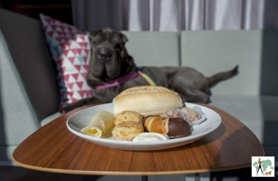 prato de comida e cachorro ao fundo, Ella no Spaces